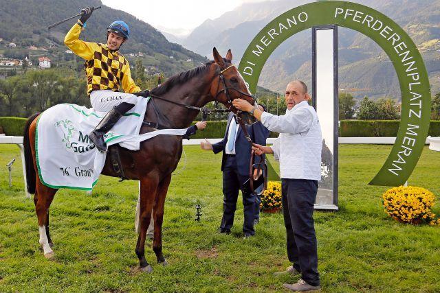 Nach dem Triumph von Meran: Kazzio unter Cevin Chan. www.galoppfotode - Petr Guth