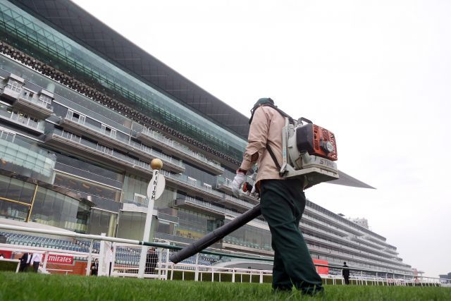 Vorbereitungen abgeschlossen? Dubai spielt in den kommenden Wochen eine Hauptrolle im Renngeschehen. www.galoppfoto.de - Frank Sorge