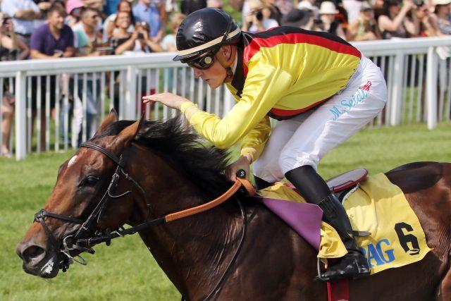 Griff nach den Sternen. Der St. Leger-Sieger Oriental Eagle startet im Prix Royal Oak. www.galoppfoto.de - Sarah Bauer