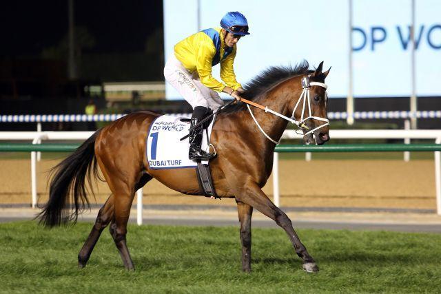 Forries Waltz siegte vor Jahresfrist im Al Rashidiya. www.galoppfoto.de - Frank Sorge