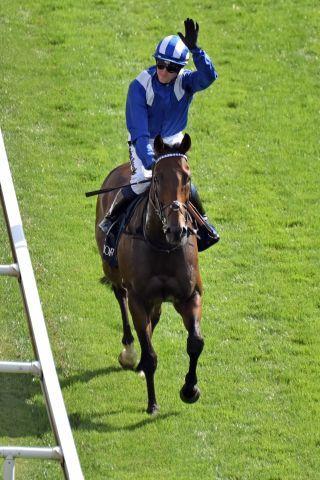 Ein Superstar gibt sich am Freitag die Ehre: Battaash tritt in den King George Stakes an. www.galoppfoto.de - John James Clark