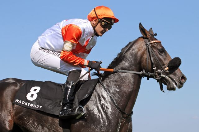 Mario Hofers Nona ist bereits einmal gelaufen und geht im ersten Rennen als Favoritin an den Start: www.galoppfoto.de - Frank Sorge