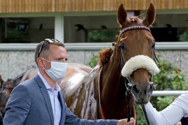 Wonderful Moon, clear favourite for the German Derby, with trainer Henk Grewe. www.galoppfoto.de - Sandra Scherning