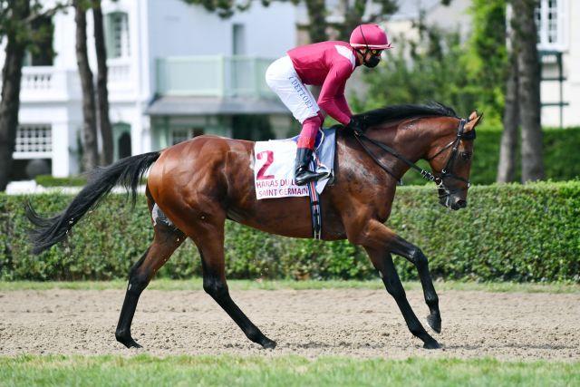 Mishriff hat den Arc ausgelassen, nun geht es für ihn in die Champion Stakes. www.galoppfoto.de - John James Clark