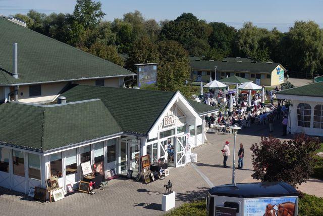 Im Oktober wird an zwei Tagen in Iffezheim auktioniert. www.galoppfoto.de