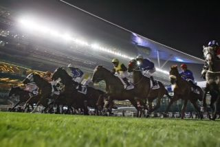 Boxen auf für den Dubai World Cup heißt es am Samstag. Foto: www.german-racing.com - Frank Sorge