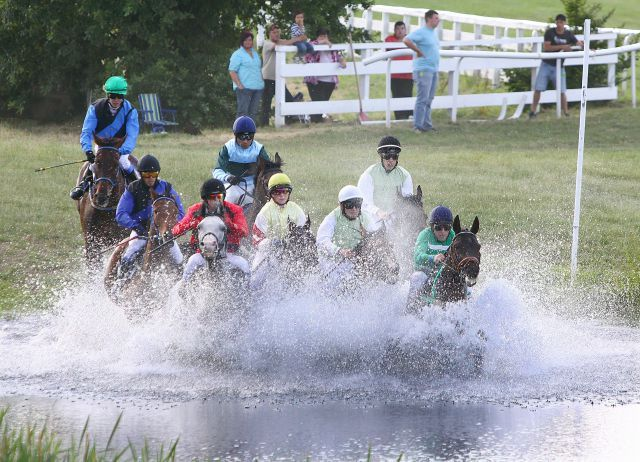 Die Seejagdrennen, bei denen es nicht nur durchs Wasser sondern auch über die Sprünge geht, gehören zu den Harzburger Highlights. Foto: Udo Epping