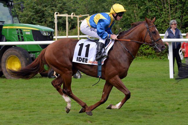 In große Fußstapfen tritt der Derbyzweite Savoir Vivre am Sonntag im Prix de l'Arc de Triomphe. www.galoppfoto.de - John James Clark