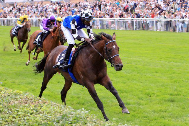 Von Australien bis Kanada, deutsche Pferde laufen am Wochende über den Globus verteilt. Protectionist versucht sich in Kanada. www.galoppfoto.de - Sabine Brose
