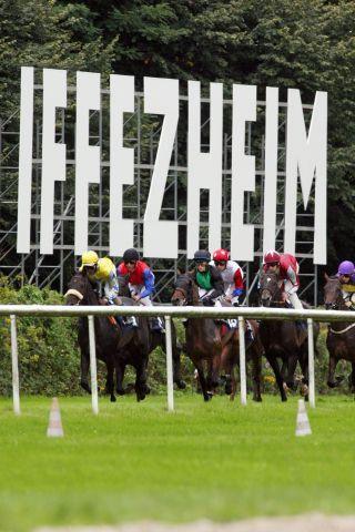 Auch das Sales & Racing-Festival endete mit einem Umsatzplus ... www.galoppfoto.de