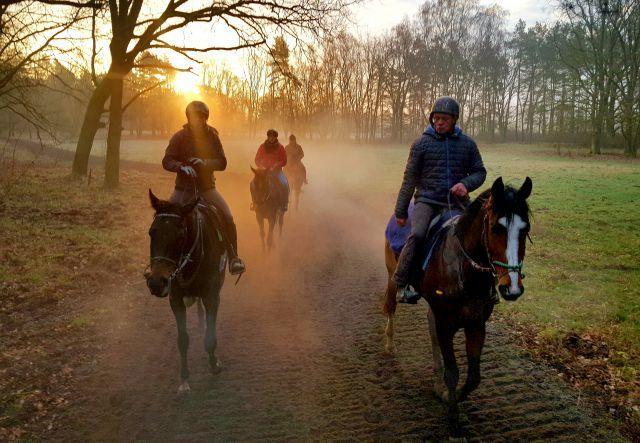 Abstand halten: Pferde und Reiter bei der Morgenarbeit auf der Bollensdorfer Trainierbahn. www.galoppfoto.de - Frederike Schloms