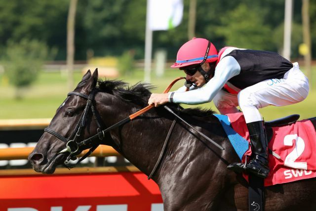 Amazonit zeigt mit Michael Caddedu im swb-Derby-Trial in Bremen Derby-Klasse. Foto: Dr. Jens Fuchs