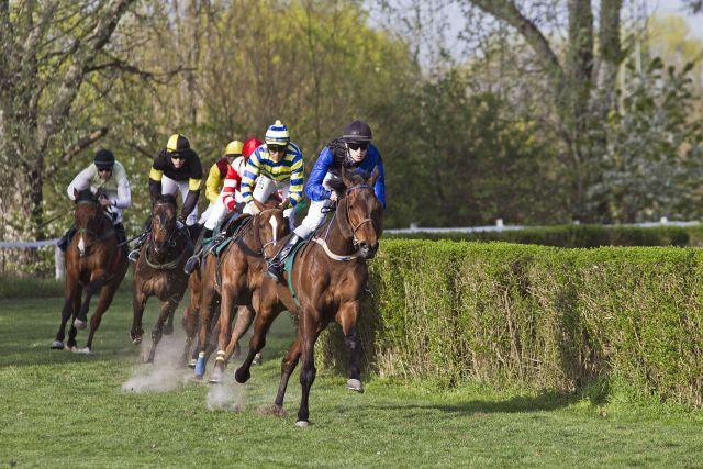 Mannheimer Waldrennbahn : Pferde und Jockeys im Bogen. Coyaique mit Marian Weissmeier vorn. www.galoppfoto.de - Sibylle Maus