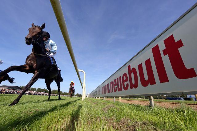 Auf der neuen Bult stehen gleich zwei Top-Rennen auf der Karte. www.galoppfoto - Frank Sorge