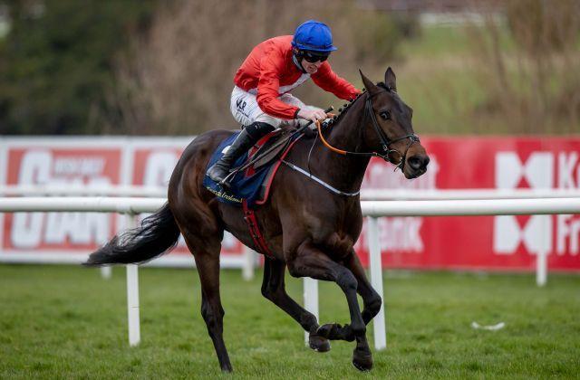 Gr. I-winner Quilixios, by Maxios. Foto: Horse Racing Ireland