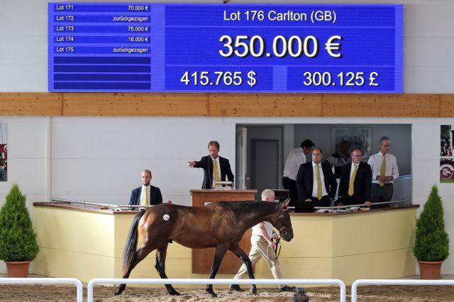 350.000 Euro zahlte Godolphin für diesen Frankel-Hengst. www.galoppfoto.de