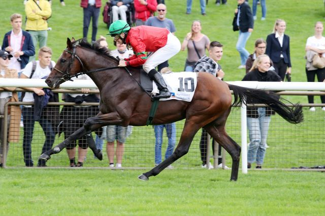 The Conqueror, winning at Hanover. www.galoppfoto.de - Jozef Bojko