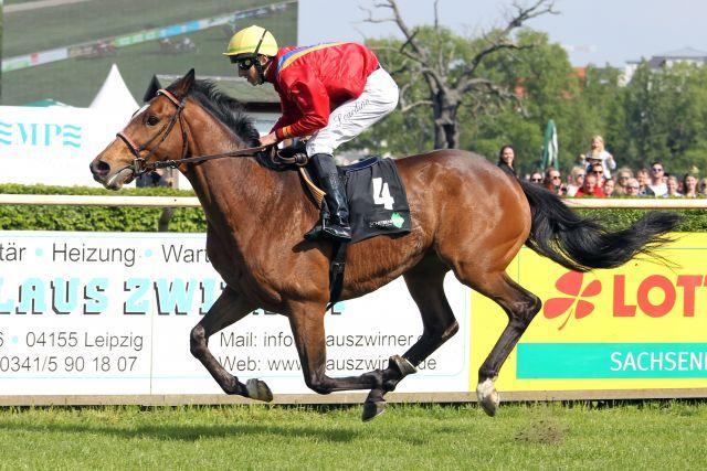 Da ist der Name Programm - Wirbelwind siegt mit Tommaso Scardino im Hauptrennen des Renntages. www.galoppfoto.de - Frank Sorge