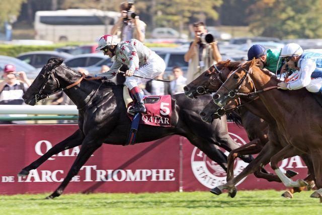 Simon Springers Dabirsim - hier mit Frankie Dettori im Grand Criterium - wurde in Frankreich zum 'Pferd des Jahres' gewählt. www.galoppfoto.de
