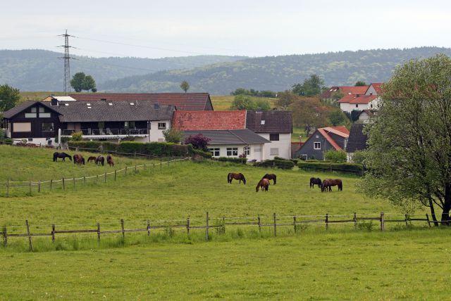Heimat vieler Pensionäre: Das Gestüt Etzean. www.galoppfoto.de - Frank Sorge