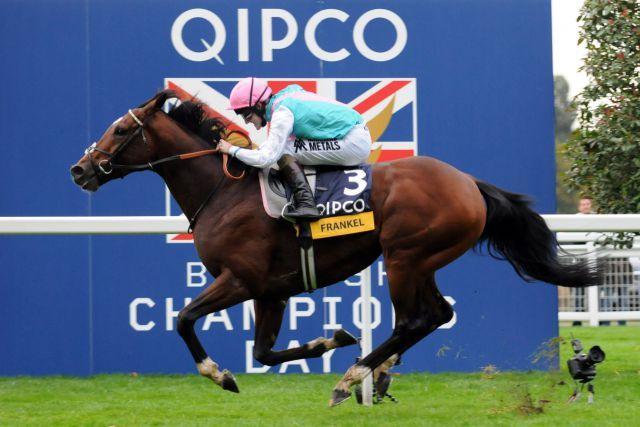 Das nicht zu toppende Highlight 2012: Frankel mit Tom Queally als Sieger in den Qipco Champion Stakes. www.galoppfoto.de - John James Clark