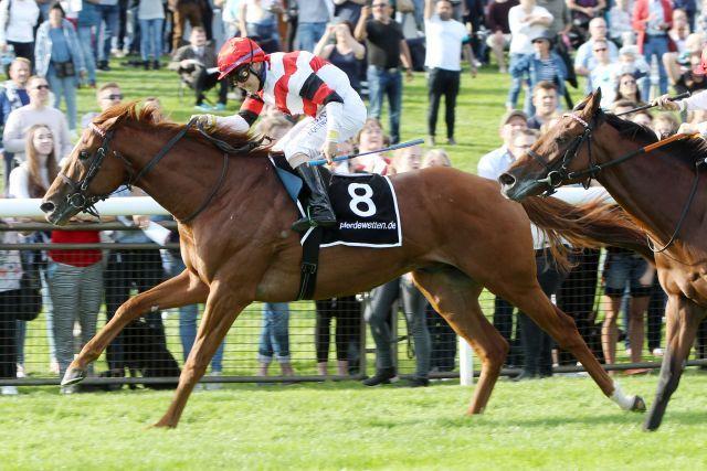 Dato gewinnt das BBAG-Auktionsrennen. www.galoppfoto.de - Marlin Sorge