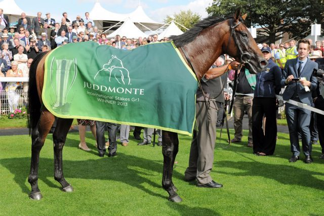 Declaration of War nach seinem Erfolg in den Juddmonte International Stakes in York. www.galoppfoto.de - John James Clark