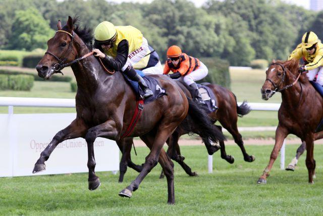 Der Fährhofer Sanagas (hier Sieger mit Filip Minarik in Köln) ist jetzt in den USA erfolgreich. Archiv www.galoppfoto.de