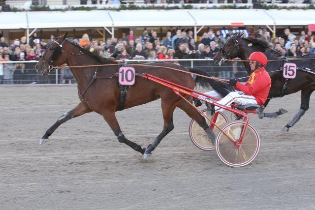 """Der Sieger des """"Großen Preises von Deutschlan"""", Tamla Celeber, mit Fahrer Örjan Kihlström. Foto www.winrace.de"""