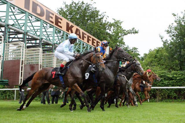 20 Startboxen gibt es beim Derby - 40 Pferde wollen noch laufen. www.galoppfoto.de