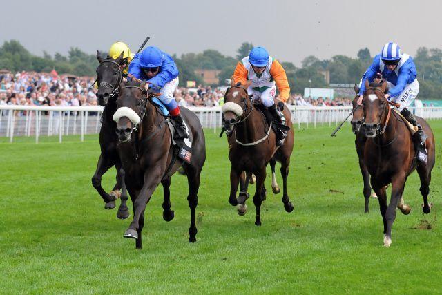 Zweite Karriere? Dubai Prince mit Frankie Dettori bei seinem Sieg in den Strensall Stakes. www.galoppfoto.de - John James Clark
