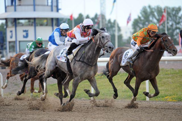 Duke Derby (rechts) gewinnt mit  Per-Anders Graberg im Sattel vor Eye in the Sky und Amie Noire das Svenskt Derby. www.galoppfoto.de - Peeo Ploff