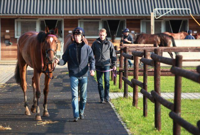 Der Jockey-Champion 2012 kommt in jedem Fall aus dem Asterblüte-Stall: Andrasch Starke (rechts) und Filip Minarik führen die Statistik an. www.galoppfoto.de - Marius Schwarz