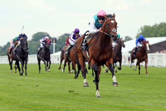 Frankel mit Tom Queally in den Queen Anne Stakes, Gr. I, in Royal Ascot, Indomito hinten links. www.galoppfoto.de - Frank Sorge