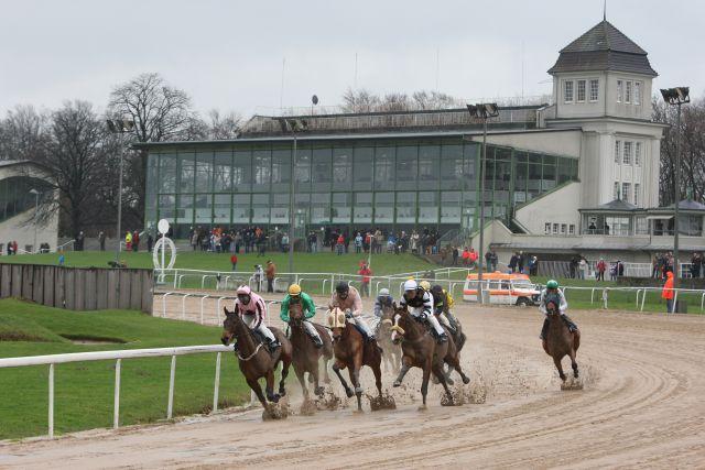 Galopprennen auf der Dortmunder Sandbahn. www.galoppfoto.de - Marius Schwarz