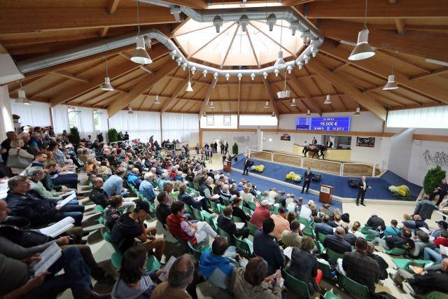 Gut gefüllte Auktionshalle bei der BBAG-Jährlingsauktion 2018, die ganz großen Zuschläge gab es dennoch nicht. www.galoppfoto.de - Frank Sorge