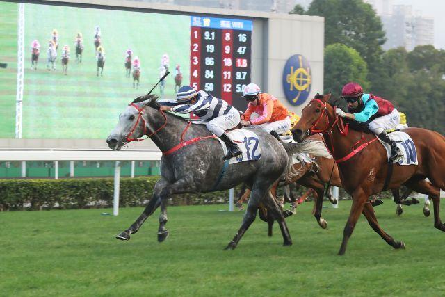 Fifty Fifty gewinnt das erste wichtige Rennen der Saison in Sha Tin. Foto: HKJC