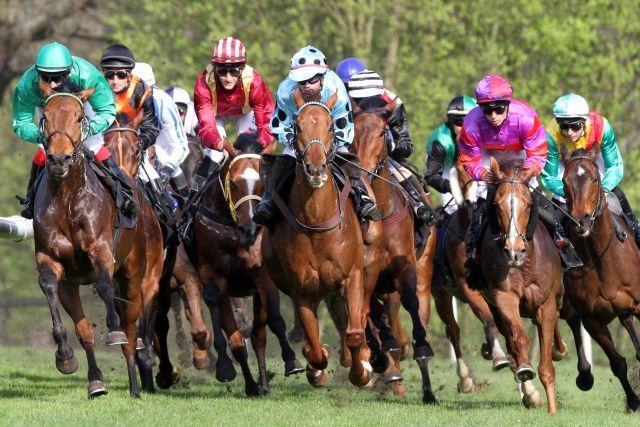 Pferde und Reiter im Bogen auf der Rennbahn in Hoppegarten. www.galoppfoto.de - Peter Heinzmann