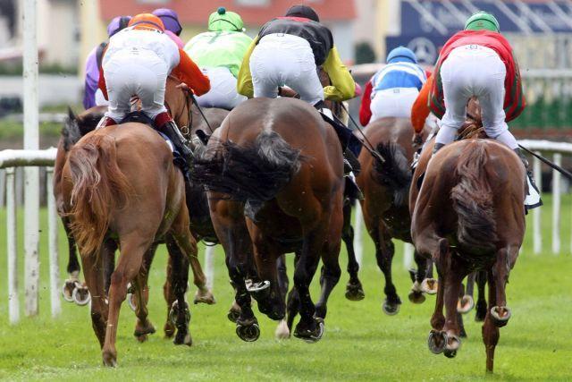 Horsepower beim Herbst-Meeting in Baden-Baden. www.galoppfoto.de - Frank Sorge