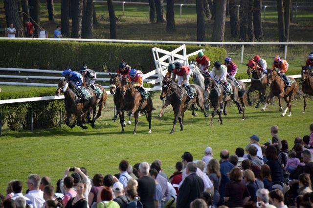Flach- und Jagdrennen gibt es in Mannheim - hier gewinnt Indian Sun die 111. Badenia. Foto: www.badischer-rennverein.de
