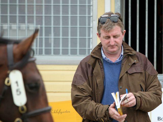 John Ferguson - hier für Scheich Mohammed bei der BBAG-Auktion - ist jetzt auch als Besitzertrainer erfolgreich. www.galoppfoto.de