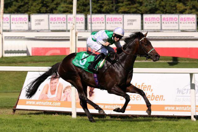 Stall Salzburgs Magic Artist triumphiert mit David Probert beim RaceBets.com Bavarian Classic und ist damit auch für das Derby eine echte Hausnummer. Foto: Dr. Jens Fuchs