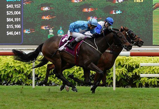 Top Knight gewinnt unter Vlad Duric das Derby in Singapur. Foto: Magic Millions