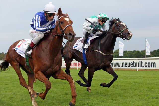 Majestic Jasmine (links) gewinnt  mit Jose Luis Silverio den Großen Preis der Volksbank Hannover. www.galoppfoto.de - Frank Sorge