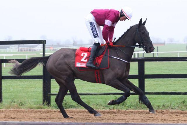 Morgan - um die Geschehnisse nach dem Tod dieses Pferdes geht es. Foto: David Betts