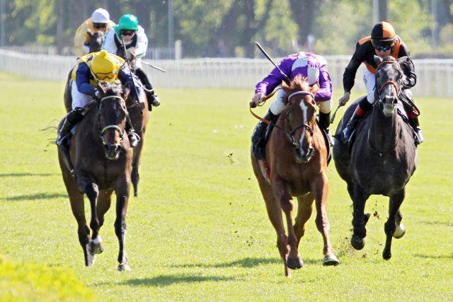 Nightflower (Mitte) gewinnt das Diana-Trial mit Andrasch Starke vor Arles (links) und Amona (rechts). www.galoppfoto.de - Frank Sorge