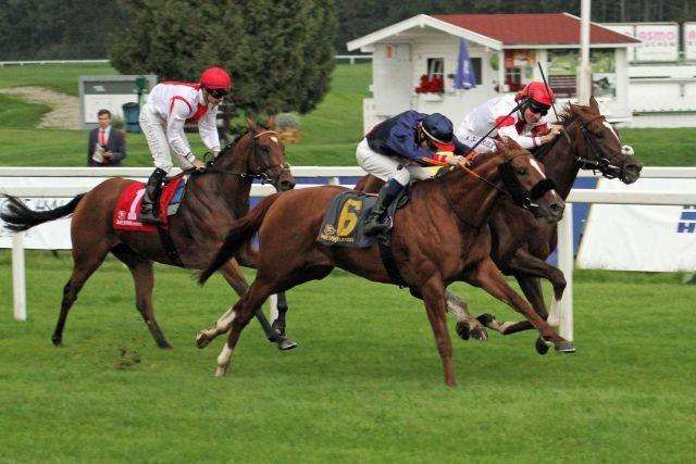 Der Blick der gegnerischen Jockeys sagt alles: Nordico mit Eddy Hardouin (blaue Kappe) gewinnt. www.galoppfoto.de - Sebastian Höger