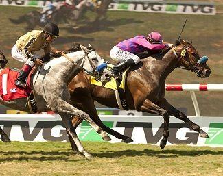 Der €2.000-Jährling Obviously bei seinem Gr. I-Sieg mit Joe Talamo in den Shoemaker Mile Stakes. Foto: ITM