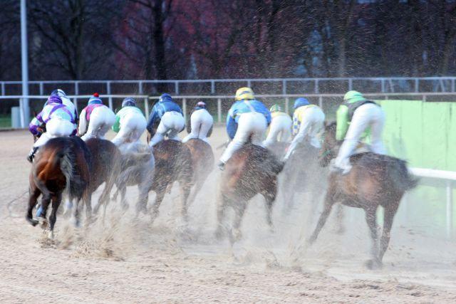 Pferde und Jockeys auf der Dortmunder Sandbahn. www.galoppfoto.de - Frank Sorge