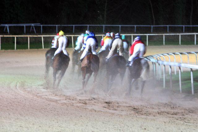 Pferde und Jockeys auf der Sandbahn ... www.galoppfoto.de - Frank Sorge